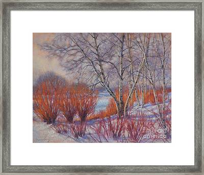 Winter Birches And Red Willows 1 Framed Print