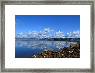 Winter Blue Iv Framed Print by Rima Biswas