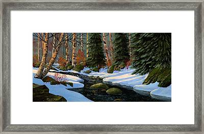 Winter Brook Framed Print