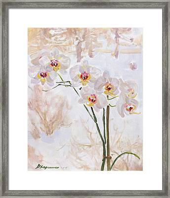 Winter Butterflies Framed Print by Victoria Kharchenko