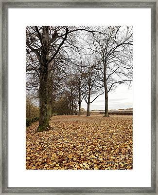 Winter Calling Framed Print