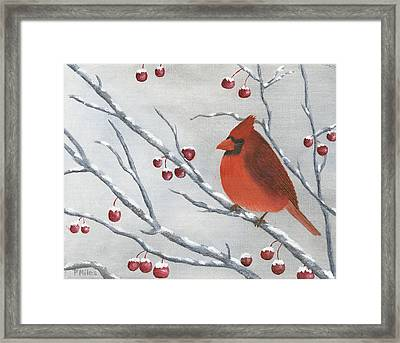 Winter Cardinal Framed Print by Peter Miles