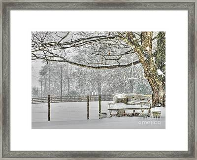 Winter Charm Framed Print by Benanne Stiens