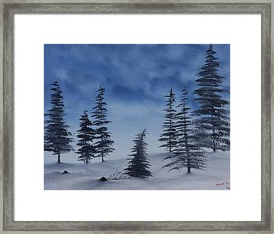 Winter Chill Framed Print by Jennifer Muller