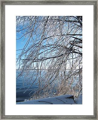 Winter Chill Framed Print by Margaret McDermott