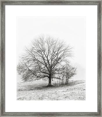 Winter Chrome Framed Print
