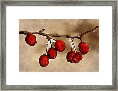Winter Color #2 Framed Print by Nikolyn McDonald