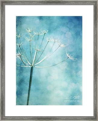 Winter Colors Framed Print by Priska Wettstein