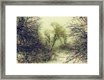 Winter Colours Framed Print