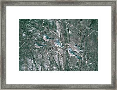 Winter Conference Framed Print by David Porteus