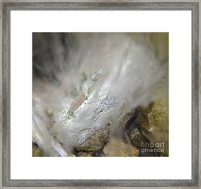 Winter Creek 6 Framed Print