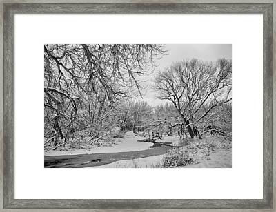 Winter Creek In Black And White Framed Print