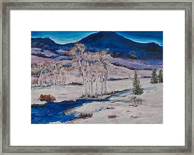 Winter Dawn Framed Print