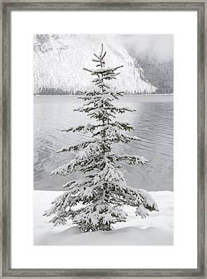 Winter Decor Framed Print