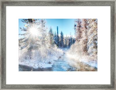 Framed Print featuring the photograph Winter Delight On Lolo Creek by Katie LaSalle-Lowery