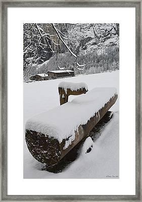 Winter Design Framed Print by Felicia Tica