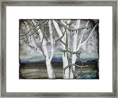 Winter Diffused Framed Print by Arlene Carmel
