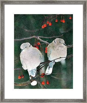 Winter Doves Framed Print by Betty LaRue