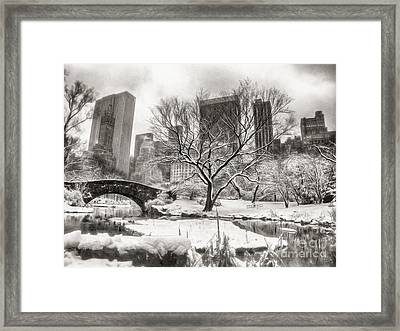 Winter Dreams Framed Print by Nishanth Gopinathan