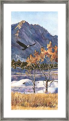 Winter Drift Framed Print by Anne Gifford