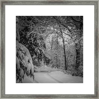 Winter Drive Framed Print