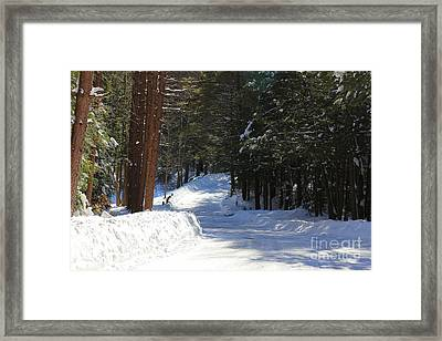 Winter Escape  Framed Print