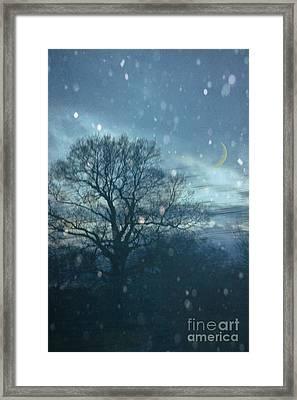 Winter Evening Framed Print by Jan Bickerton