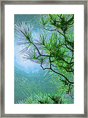 Winter Evergreen  Framed Print by First Star Art