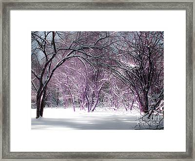 Winter Faeries Framed Print by Barbara McMahon