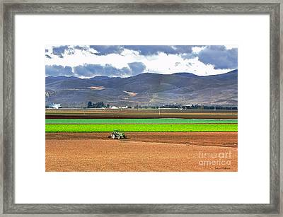 Winter Farm In California Framed Print