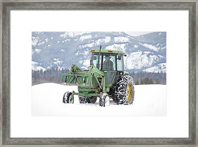 Winter Feeding Framed Print by Diane Bohna