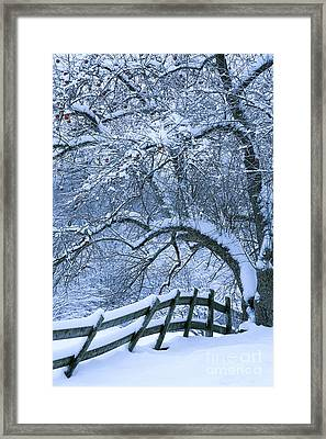 Framed Print featuring the photograph Winter Fence by Alan L Graham