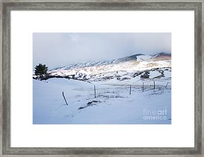 Winter Fence Framed Print by Nabucodonosor Perez