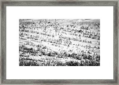 Winter Field Framed Print by Christi Kraft