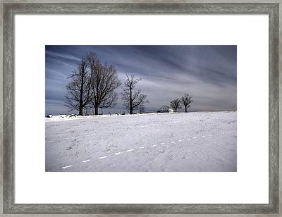 Winter Field Framed Print