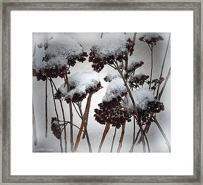 Winter Flowers Framed Print by Mikki Cucuzzo