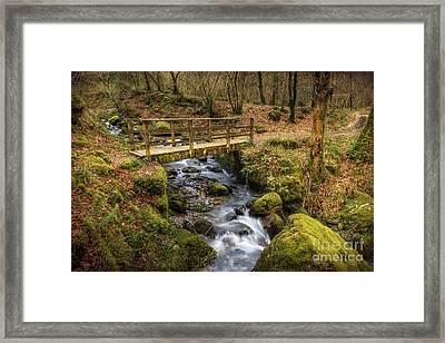 Winter Footbridge Framed Print by Adrian Evans
