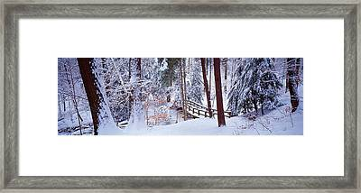 Winter Footbridge Cleveland Metro Framed Print by Panoramic Images