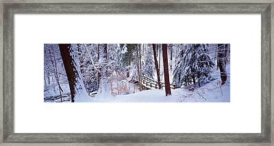 Winter Footbridge Cleveland Metro Framed Print