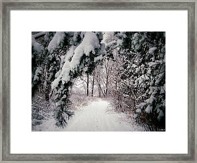 Winter Footpath Framed Print by Daniel Janda