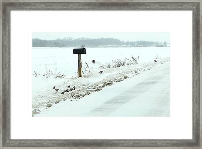 Winter Foragers Framed Print