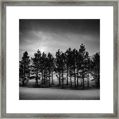 Framed Print featuring the photograph Winter Forest by Frodi Brinks