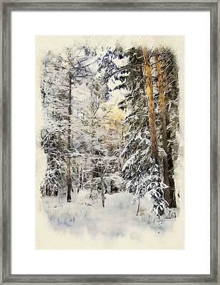 Winter Forest Landscape 44 Framed Print