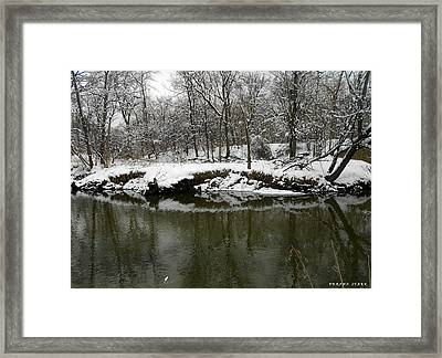 Winter Forest Series 2 Framed Print