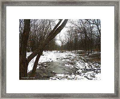 Winter Forest Series Framed Print