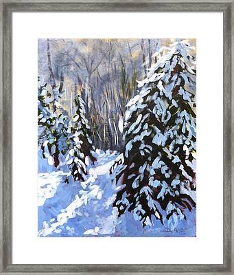 Winter Forest Walk Framed Print