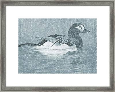 Winter Fowl Framed Print by Mosav Art