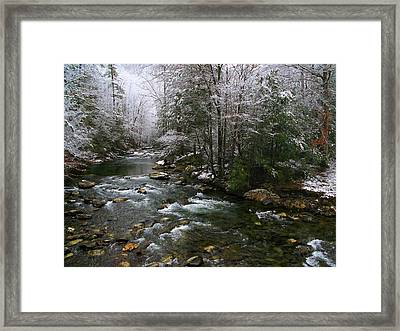 Winter Fresh Framed Print