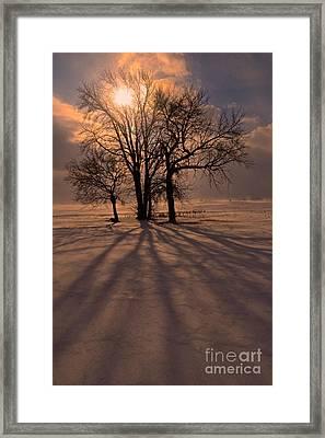 Winter Glory Framed Print