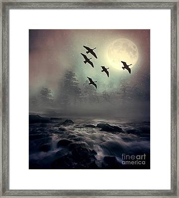 Winter Golden Hour Framed Print